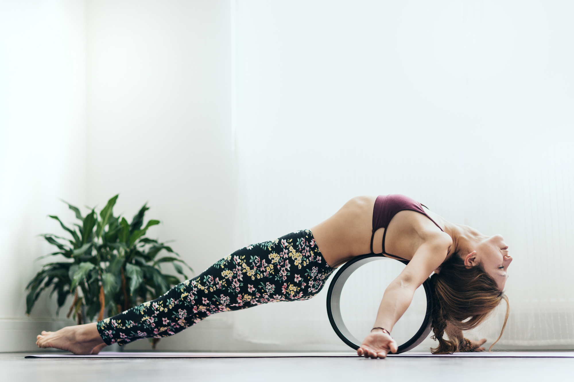 roue de yoga - yoga wheel